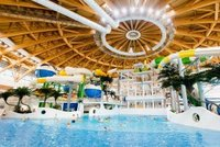 A Public Waterpark Inside a Mall? It Could Happen Image